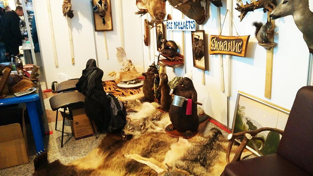 Выставка в минске рыбалка охота активный отдых